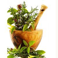 Самые эффективные противопростудные травяные чаи